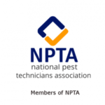 NPTA-vp-smart-removals